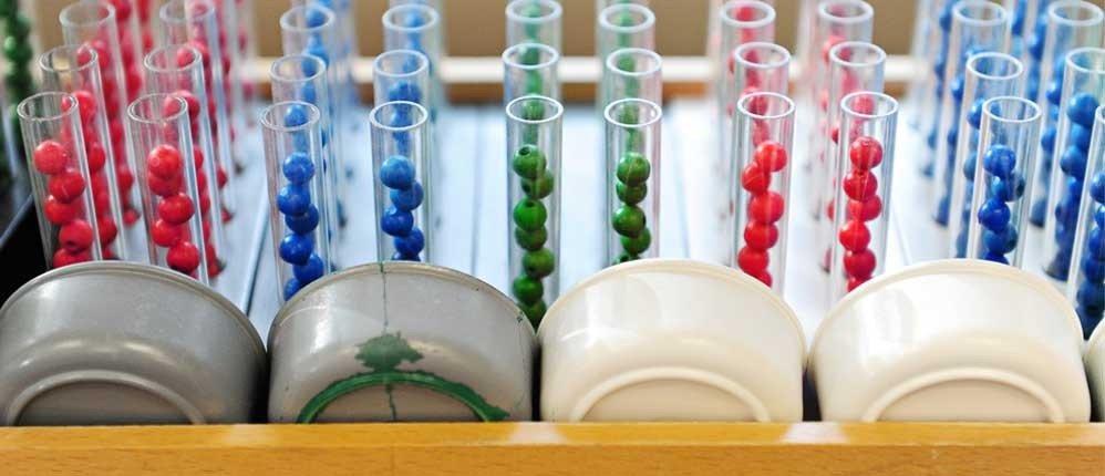 Jarrow Montessori. Where Tradition Meets Innovation.